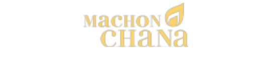 Machon Chana Women's Institute