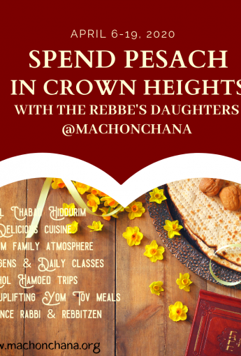 Pesach in Crown Heights