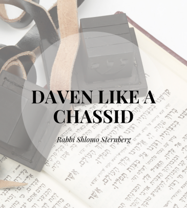Daven Like A Chassid