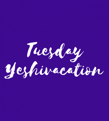 Spend Tuesday at Yeshivacation